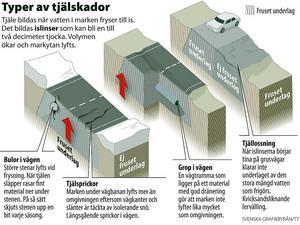 Bild: Svenska Grafikbyrån/TT