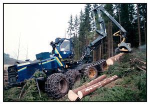 För klimatets skull borde politikerna bland annat besluta om att snabbstoppa kalhuggning av skog, tycker Torbjörn Vennström. Foto: Fredrik Persson