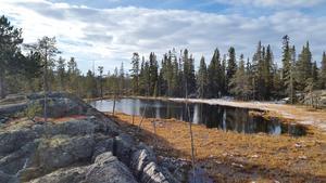 Enligt Jerker Lysell är det bland annat åsryggar, hängmyrar och platåer som gör Råndalen speciell för orientering. Foto: privat
