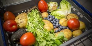 Insändarskribenterna föreslår hur matbutikerna i Norberg skulle kunna bidra till minskat matsvinn.