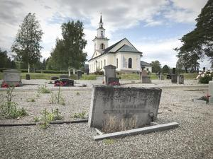 Gravstenar som lutar eller som stöttar sig mot varandra, tistlar och ogräs. Det är tyvärr en vanlig syn på grusgravplatsen i Ytterlännäs.