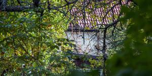 Trädgården är igenvuxen och huset förfallet på utsidan.