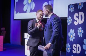 Mattias Karlsson, som är partiets gruppledare i riksdagen, har precis inlett fredagen med sitt tal och lämnar här över till Henrik Vinge.