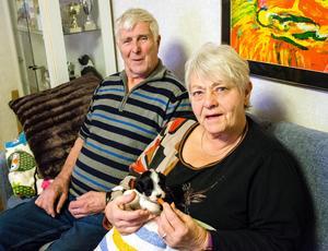 Hans och Anita har stödmatat Tingeling, och efter fem veckor väger hon nu ett halvt kilo.