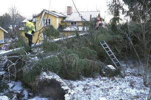 Många privatpersoner och företagare som till exempel skogsägare, har drabbats hårt av stormen Alfrida. Kommunen lät idrottshallar och brandstationer runt om i kommunen hålla öppet dygnet runt för behövande. Nu har kostnaderna sammanställts.