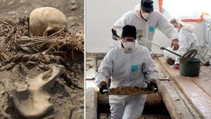 Skelettet till vänster har ingenting med artikeln att göra. Bilden är ett montage.