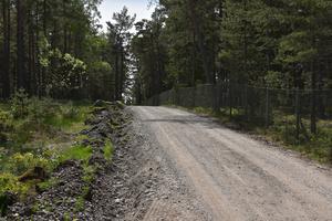 Bild: Arkiv   Efter att ha besökt Örens naturreservat reagerade MIljöpartiet Nynäshamn bland annat på att vägarna, på grund av dikningen, har blivit smalare. Nu svarar