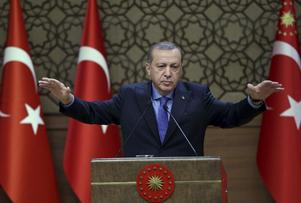V menar att Natomedlemmen Turkiet under