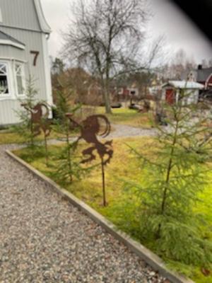 Foto: Ulla Borgqvist