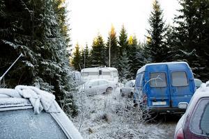 Ett 40-tal bilar är parkerade i skogen.