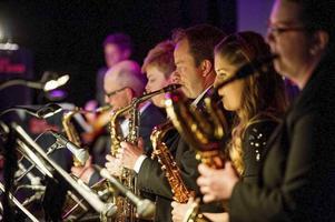Övik Big Band spelar åter igen på Folkets Park - och åter igen gör de en hyllningskonsert i Whitney Houstons ära.