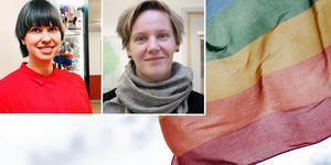 """""""Vi välkomnar att ett kritiskt perspektiv på heteronormen har utvecklats"""" skriver Liza Lundberg och Jessica Wide, S-kvinnor Falun. Foto: Karin Sundin/TT/montage"""
