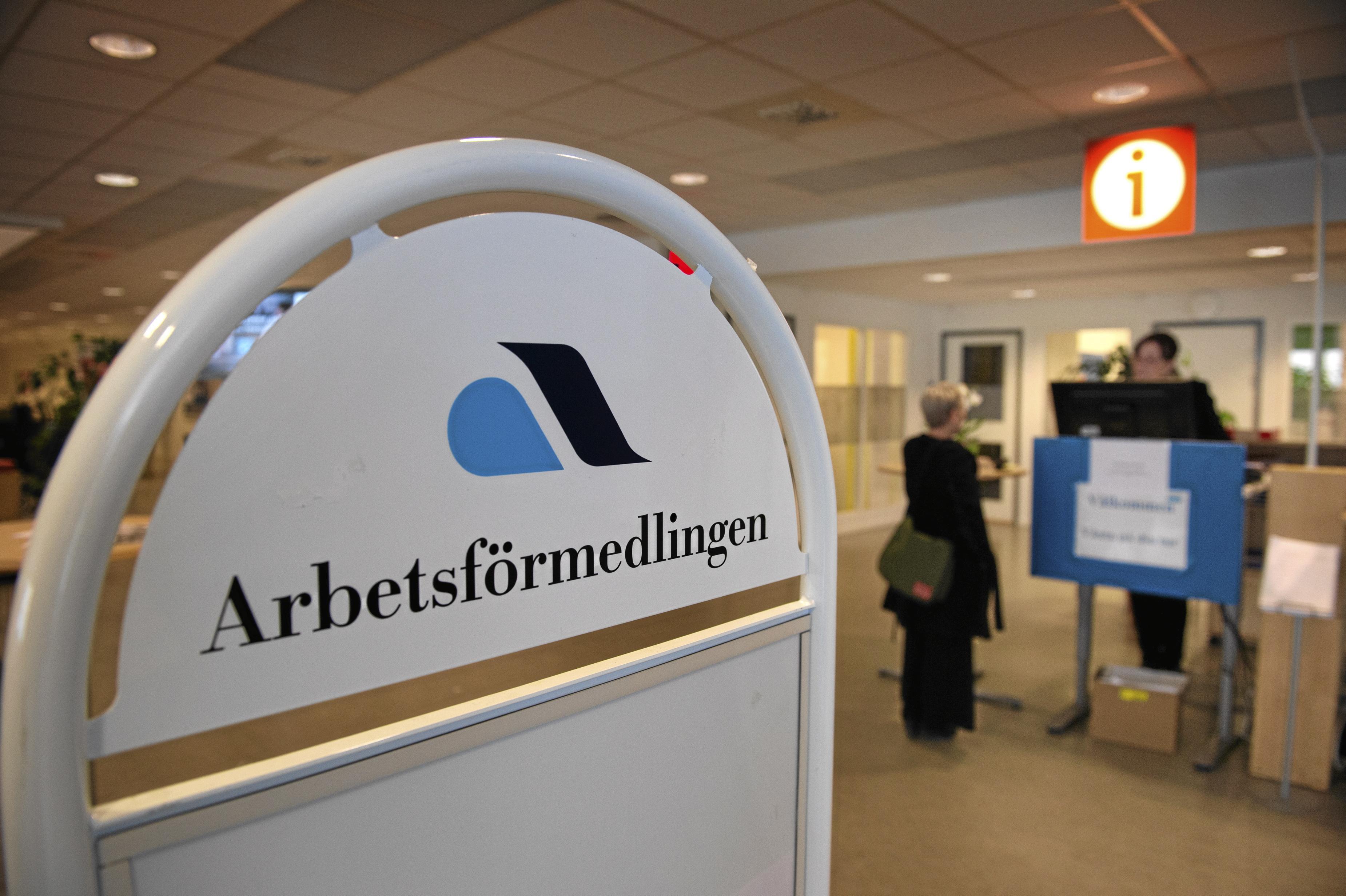 Vänsterpartiet anser att privatiseringen av Arbetsförmedlingen är ett oblygt försök att avskaffa den svenska aktiva arbetsmarknadspolitiken.