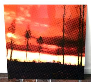 En bild som skildrar den stora skogsbranden i Västmanland 2014. Det blev startskottet för Susanne Torstenssons arbete med utställningen