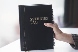 Foto: Fredrik Sandberg .