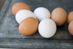 Att  KRAV-märkta ägg är dyrare är för att djur och natur ska må bra, skriver  Anita Falkenek, Vd KRAV. Foto: Matthew Mead.