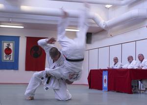 Många av teknikerna till 3:e dan innehåller höga kast med mycket energi i. Här är det Håkan som kastar Anders i kastet Kata guruma efter ett försök till struptag. Foto: Algot Karlsson