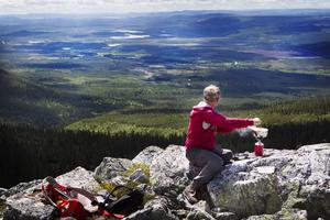 Processerna med att att bygga ut orörda Skorvdalen, Örndalen, har pågått i drygt sex år utan att bolaget fått något tillstånd. Foto: Robert Henriksson