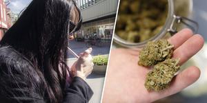 Både Maria och Sara hade önskat att de kunde köpa sin cannabis på Systembolaget. Bilden är arrangerad, personen på bilden har ingenting med artikeln att göra. Foto: Tobias Svensson/ David Zalubowski (TT).