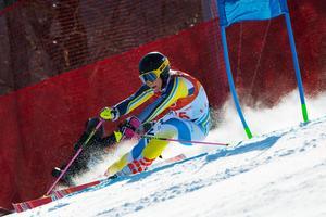Frida Hansdotter blev bästa svenska i storslalomtävlingen med sin sjätteplats. Bild: Joel Marklund/Bildbyrån