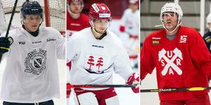 Patrik Elfsberg, Filip Lander och Conny Strömberg är tre av spelarna som lämnade HHC efter förra säsongen.