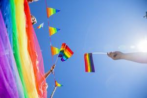 Flaggförbud och inskränkningar för myndigheter att gå i prideparader är bara början för det blå-bruna blocket. Vi har tagit kampen förr och vi tar kampen nu, skriver debattförfattarna.