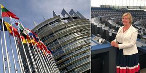 EU-parlamentets byggnad i Strasbourg. Liberalernas Europaparlamentariker Karin Karlsbro i sessionsalen. Foto: Fredrik Persson/Scanpix och privat