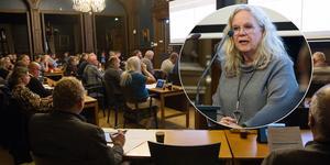 Maria Lind (S) ska nu vikariera som oppositionsråd i Söderhamn.