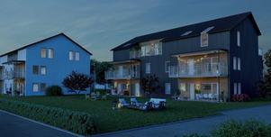 Sju hus i trä och med tak i plåt finns i planerna. Varje hus ska innehålla mellan sex och åtta bostadsrätter i olika storlekar.