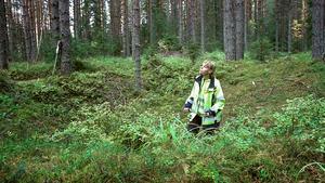 Speciellt norr om Dalälven är det mycket vanligt att hitta fångstgropar i olika system. De har använts i många tusen år, men 1864 förbjöds de eftersom älgstammen höll på att utrotas. På bilden står arkeolog Maria Björck  i en fångstgrop under en inventering i Gävleborgs län. Arkivbild