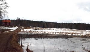 På skäggheden utanför Karlsbyn har åkermark svämmats över och flödena kommer att öka ytterligare.