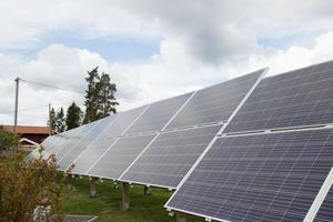 Alla borde sätta upp solpaneler, menar Eoq.