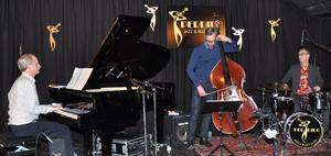 Göran Strandberg Trio, Blueskällarn.                                                               FOTO: BENGT FERM