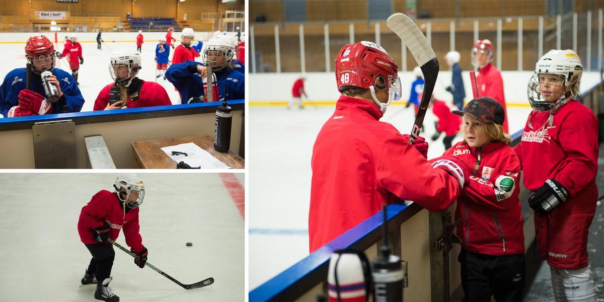 BILDEXTRA: Kovlands hockeyskola fick besök av idolerna från Timrå – en vecka där man har roligt: