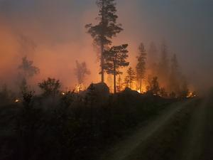 Så här såg branden ut vid Orrknätten drygt en mil väster om Fågelsjö den 18 juli. Nu har brandmännen fått kontroll och ringat in branden. Foto: Privat.