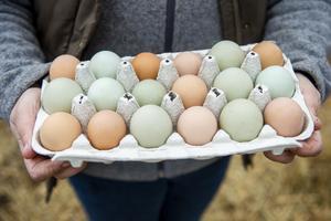 Ägg hör till påsken.