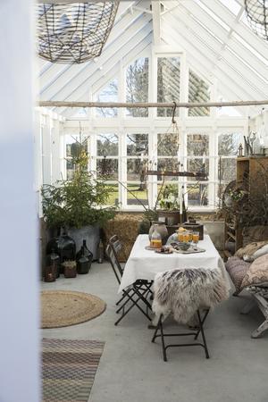 Det är imponerande högt i tak i växthuset vilket ger en väldigt rymlig känsla.