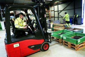 Att kunna köra och lasta pallar med truck är nödvändigt för lastbilschaufförer. Valle Sjöberg på Jämtlands Gymnasium Fyrvalla  är länets representant under Yrkes-Sm.