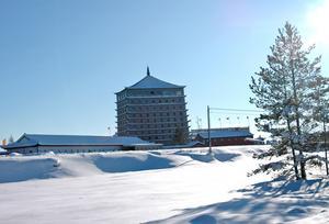 Bild: Katarina Lönnberg 2010-02-11