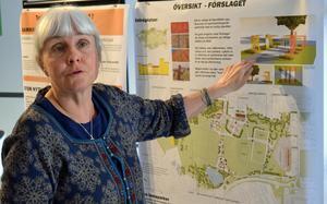 Katarina Nilsson, landskapsarkitekt vid Borlänge Energi, bedömer att utvecklingsplanen kan genomföras under en tioårsperiod.
