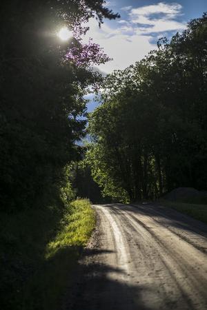 En vanlig grusväg någonstans i Sverige.
