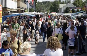 Sommarturisterna i länet blir allt fler, men andelen utländska besök minskar vilket oroar ansvariga.