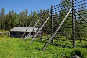 Numer har slåtter och bete återupptagits för att bevara ängslandskapet och den fora det skapar. Foto: Johan Engman