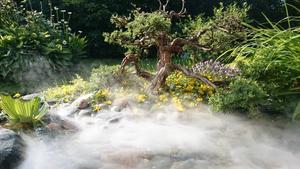 En dimm-maskin fixar magisk stämning i dammen.