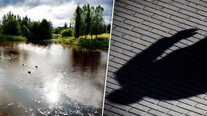 Mannen har flera gånger blottat sig på offentliga platser i Borlänge, bland annat i Vattenparken. Bilden är ett montage. Foto: Arkivbild/TT