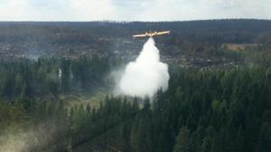Franskt flygplan i aktion vid skogsbranden i Västmanland 2014.Foto: Securité Civile/TT