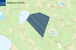 Naturreservatet Kläppberget är beläget vid östra sidan omKläppsjön, cirka 11 kilometer sydost om Svenstavik och 11kilometer nordost om Åsarna. Naturreservatet är 82 hektar ochomfattar Kläppbergets örtrika och lövträdsrika västsluttning frånbergets topp längst i öster och ner till Kläppsjöns östra sida.Kläppbergets topp når 550 meter över havet och Kläppsjön liggerpå 440 meter över havet, skriver länsstyrelsen i sitt beslut. Foto:  Naturvårdsverket, Lantmäteriet, Geodatasamverkan
