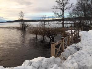 Sjön Vikarn har svämmat över och hotar nu hus i närheten. Bild: Privat.
