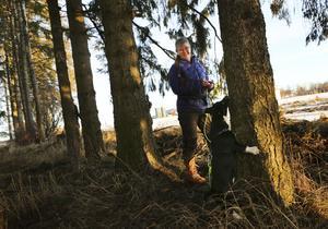 Nina Johansson och hunden Henry, som är en blandning av några olika terrierraser, tränar med matgömma i tallarna intill hunddagiset i Ås.