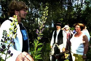 Bevarad till eftervärlden. Den äkta stormhatten som växer naturligt i Stämshöjen utanför Falun kanske blir kvar på växtplatsen i 400 år till. Staffan Jansson från Dalarnas botaniska förening hoppas. Foto:Mikael Forslund
